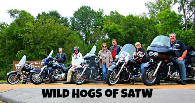 Wild Hogs of SATW